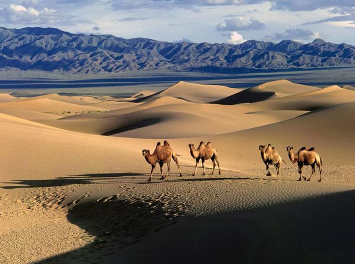 La Mongolie veut intensifier le développement de son secteur touristique