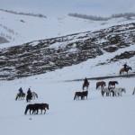 voyage-mongolie-nouvel-an