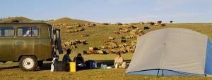 circuit mongolie