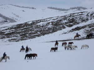 mongolie-voyage-hiver