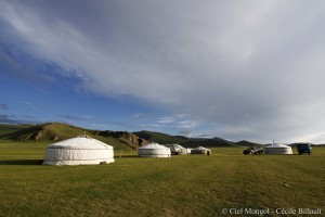 Vallée de l'Orkhon blog