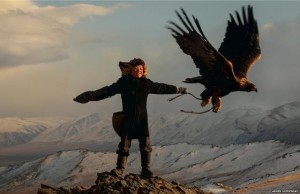 Chasse à l'aigle chez les Kazakhs de Mongolie