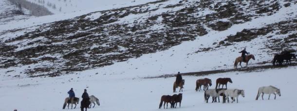 La vie d'aujourd'hui des éleveurs mongols