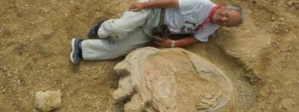 Empreinte géante de dinosaure découverte dans le Gobi