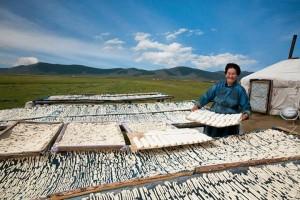 la-cuisine-de-mongolie-lors-dun-voyage-culinaire