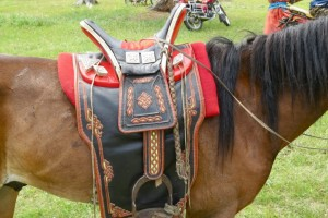mongol-aduu